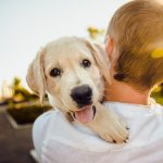 cuidados para que tu mascota sea feliz