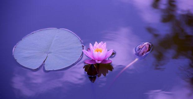 7 tipos de meditaciones para que tu vida esté más equilibrada