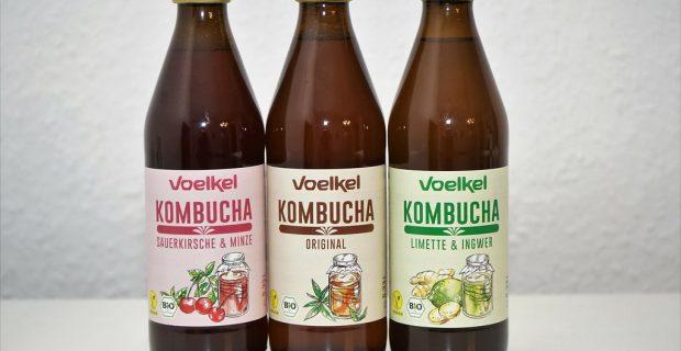 ¿Qué es la famosa kombucha?